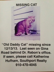 Old Daddy Cat1