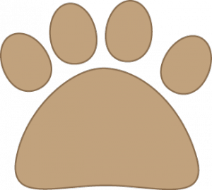cat-paw-brown