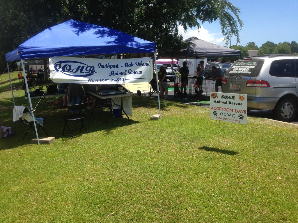 It was our biggest adoption event showing ever u2013 7 dogs 5 cats and 16 humans c&ed out at various times under the tent by the old shade tree outside the ... & Petsense