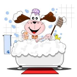 puppy bath 2
